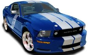 2006 shelby mustang