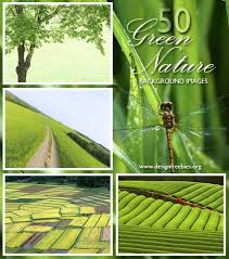 green nature pictures