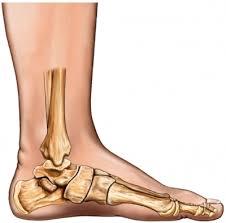 feet arches
