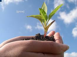 grow pictures