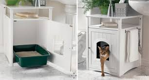 cats litter boxes