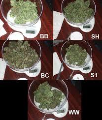 35 grams