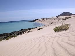 dunas playa
