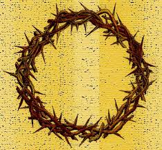 crown of thorns image