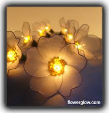 lights flower