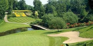 druids glen golf