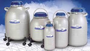 nitrogen container