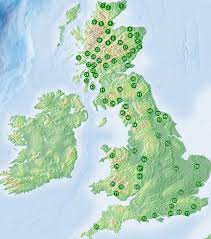 forests in the uk