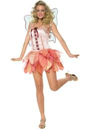 fairy fancy dress outfits