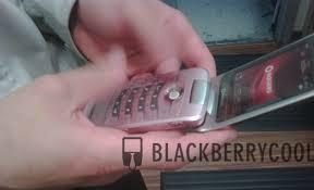 rogers blackberry pearl flip