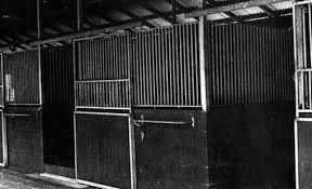 horses stables