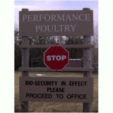 biosecurity poultry