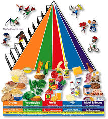 food pyramid pictures