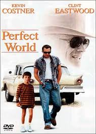 perfect world dvd