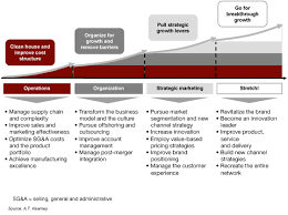 business growth model