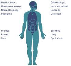 map of body organs