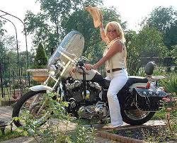 saddlebag sportster