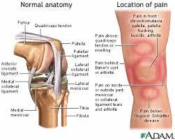 knees pain