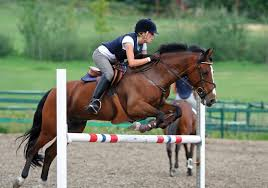 jumping on a horse