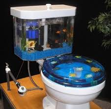 funny fish tanks