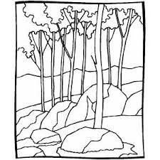 forest coloring book