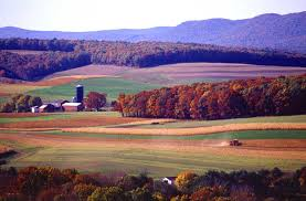 farmland picture