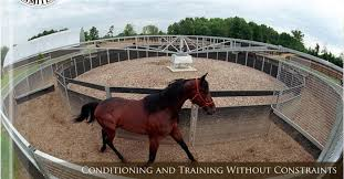 horse exercisers