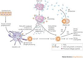 prostaglandin receptor