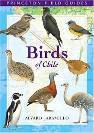 books of birds
