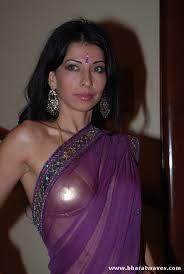 hot pics in saree