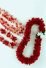 lei picture