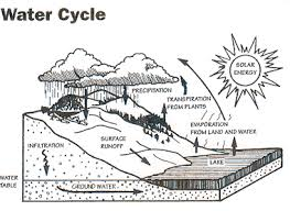 the water cycle project