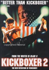 the kickboxer