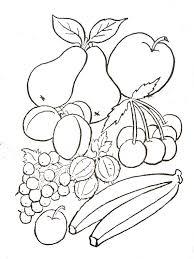 pomme poire abricot