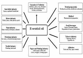 essential oil plant