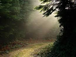 light road