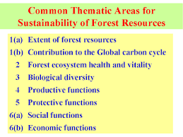 forest resources of india