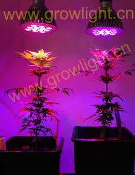 led grow weed