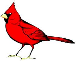 animated bird clipart