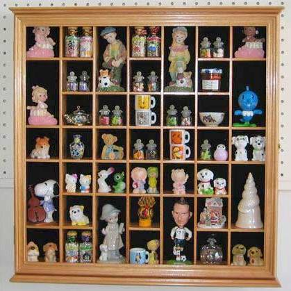 Collectible Display Case