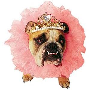 Papermagic 858000 Zelda Queen Pet Small