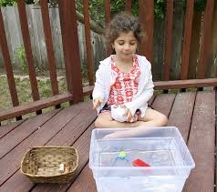 Materials Sink Or Float by Science For Kids Sink Or Float With Free Printable Buggy And