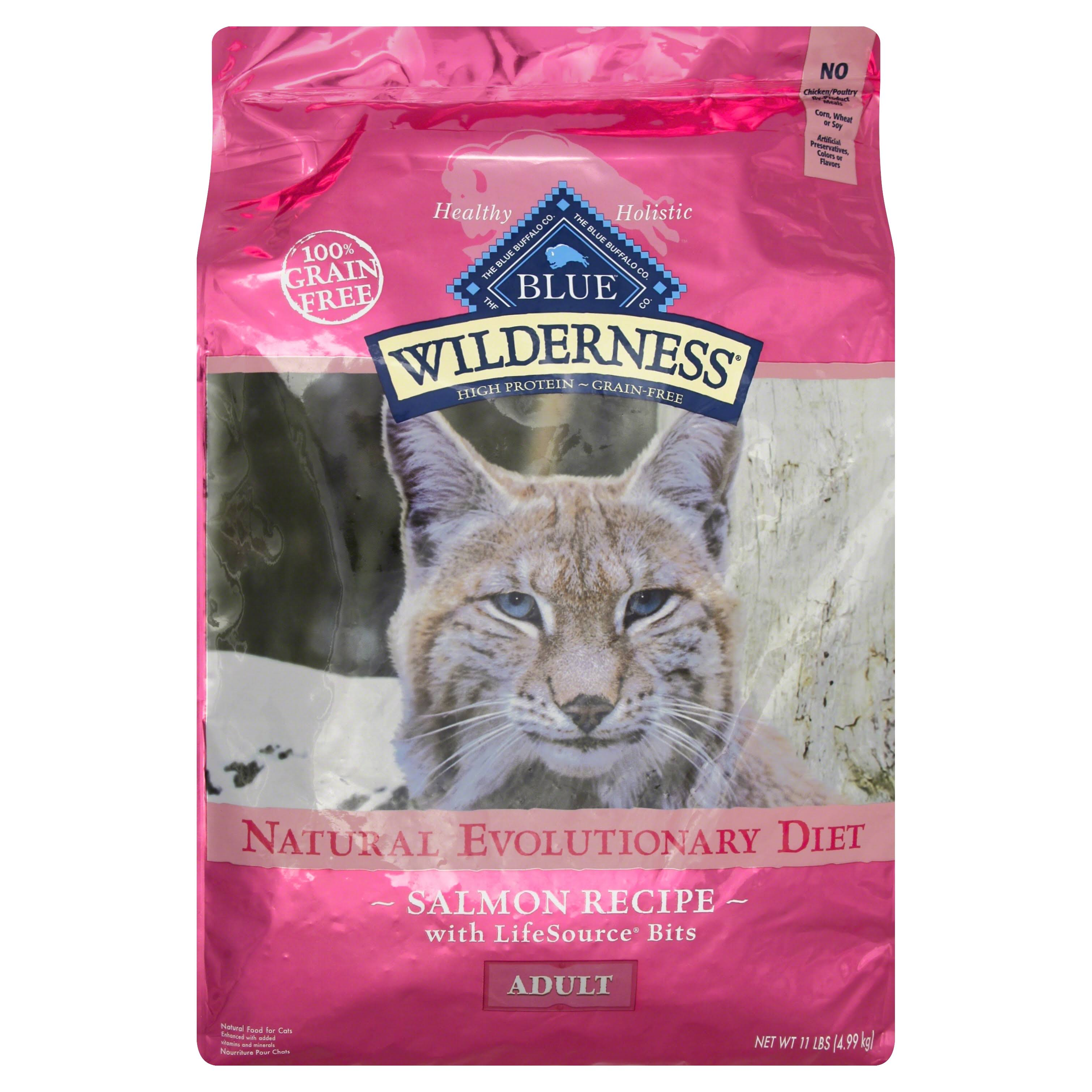 Blue Buffalo 100-Percent Grain Free Dry Cat Food - Salmon Recipe