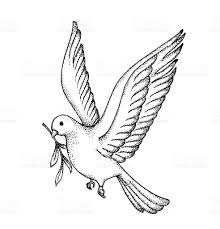 Vector of Hand draw dove Symbol of peace royalty free vector of hand draw