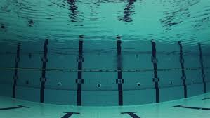 Olympic Swimming Pool Stock Video Footage