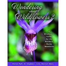 Wondering About Wildflowers: A Wildflower Guide For The Northern ... Pob Spring Cleaning Sale 20 Off All Catalog Items Through March 27 California Found February 2018 Subscription Box Review Coupon Eden Brothers Seed Company 15 Color Based Mixes Milled Wildflower Apparel And Co Coupons Promo Discount Codes Serenbe Playhouse The Meadow Tickets Coupons 3 For 2 Wedding Clipart Marriage Words Clip Art Save The Date I Love You Mr Mrs Thank Handdrawn Digital Seafoam Flower Pink Shabby Chic Digitally Hand Drawn For Invitations Valentines Day Vtagepink Purchase David Tutera Personalized Foil Clear Case Cover Milkyway Nature Hills Coupon Code Wdst Restaurant Deals For Pandora Wildflower Murano Charm Af682 30642 Cbd And Thc Soap Vaporizers Capsules