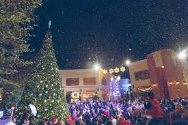 Christmas Tree Recycling Carmel Valley San Diego by 13 Places To Get Some Of The Best Breakfast In San Diego