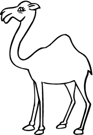 Camel Face Coloring Page 18
