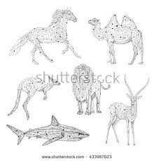 Low Poly Vector Animals Set Stylized Linear Wire Construction Concept Polygon Outline Isolated Illustrations