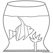 Angel Fish In Bowl